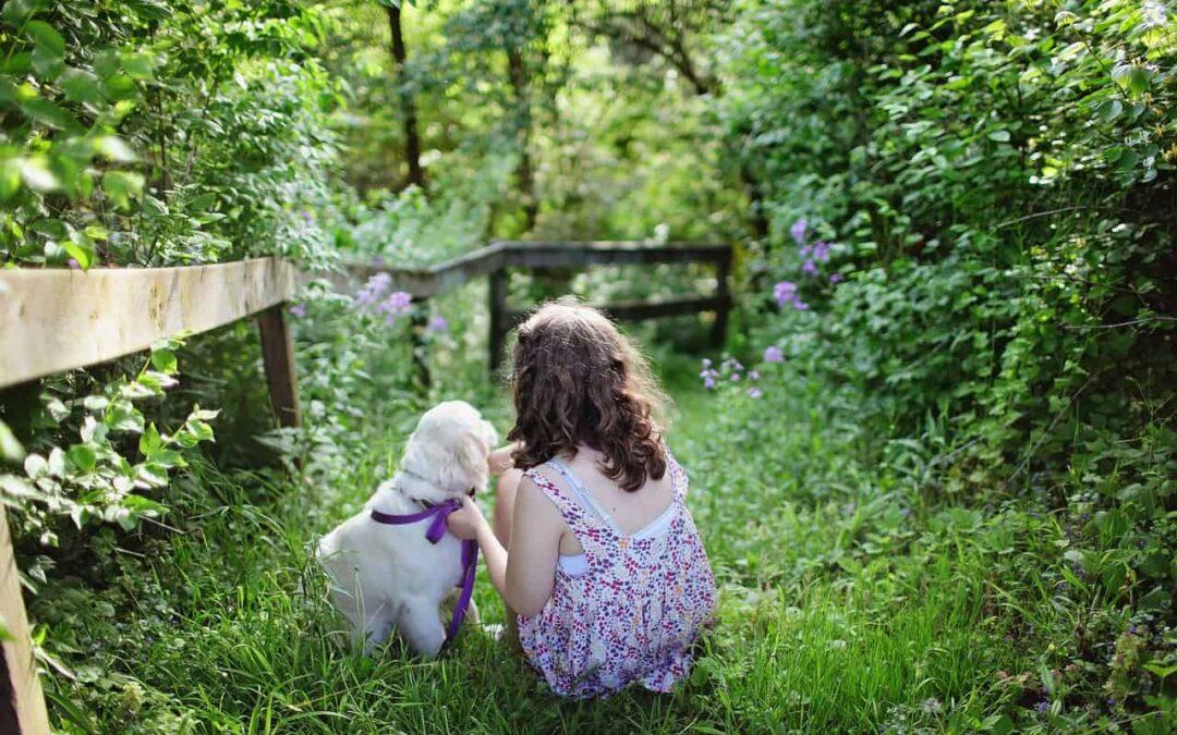 Życie z psem – jakie się wydaje, a jak wygląda naprawdę?