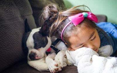 Pies dla rodziny z małym dzieckiem